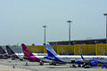 Domestic airlines curtail fleet expansion plans