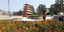 Chandigarh gets a 13-acre Japanese garden