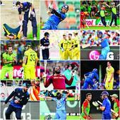 2015: A cricket odyssey