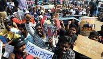 TN Assembly passes law for Jallikattu, protest turns violent before ending
