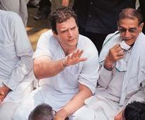 Rahul Gandhi back in action?