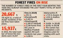 Forest fires in Uttarakhand brought under control, four persons arrested