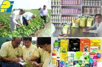 PI Industries targets topline growth of 18-20% in FY16: Mayank Singhal
