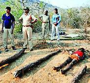 NHRC wants CBI probe into woodcutters killings