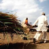 Land acquisition bill implies deep trouble
