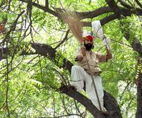 Plea in SC for probe into farmer's suicide during AAP rally