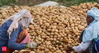 Potato price surges by 28% -38% in UP, West Bengal as demand rises in the lockdown period