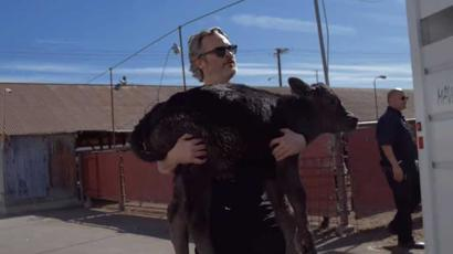 Joaquin Phoenix saved cow and her calf from slaughterhouse day after his Oscar win....