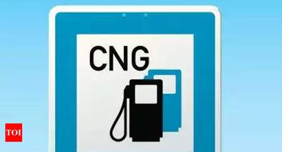 CNG queues: Indraprastha Gas Limited told to up dispensing capacity | Delhi News - Times of India