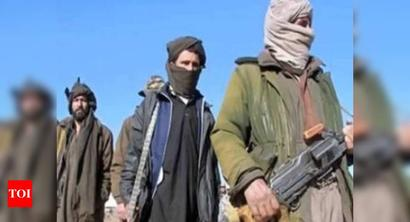 Taliban council agrees to cease-fire in Afghanistan