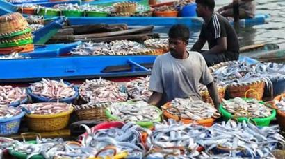 Tamil Nadu pushes Gujarat to 2nd spot in annual fish production