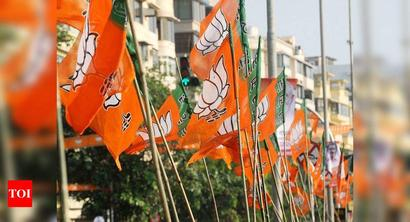 Assam BJP start voter-connect mission with eye on 2021 assembly polls