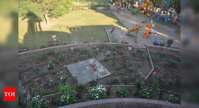 NMC begins to develop rose garden