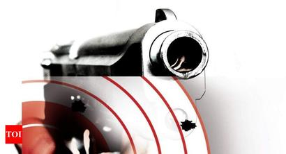 Patiala man opens fire at wife, nephew, booked