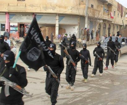 Islamic State active in some Indian states: Minister