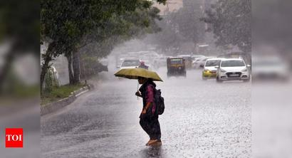 Heavy to very heavy rains likely over western coast, central India from Aug 3-5: IMD
