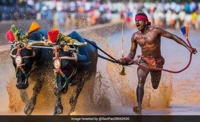 Karnataka Man's